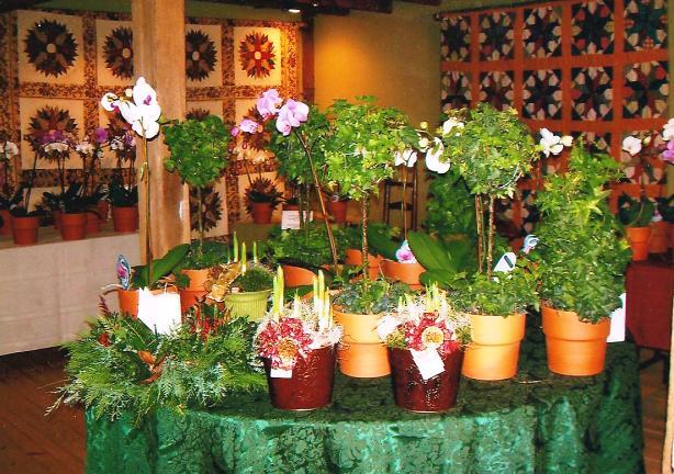 Annual Christmas Greenery and Orchid Sale